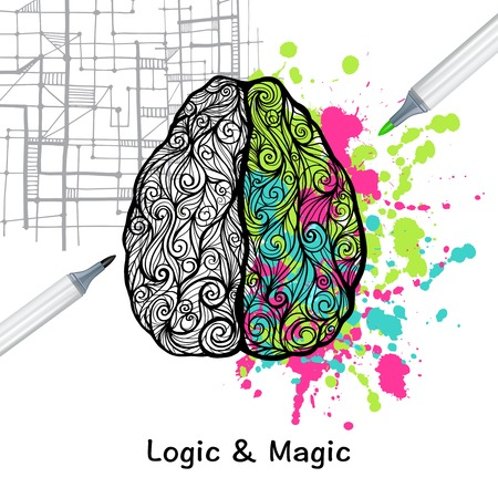 left right: Hand drawn human brain with left logic and right creative hemispheres vector illustration