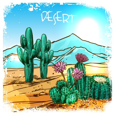 desert sun: Cactuses in mexico desert with mountains on background sketch vector illustration