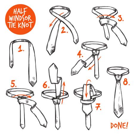 nudo: La mitad windsor lazo nudo haciendo instrucciones esbozar ilustraci�n vectorial aislado