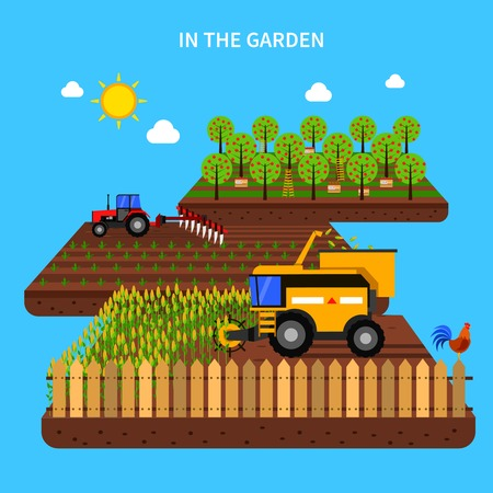 corn field: Agriculture concept with tractor harvest in the field flat vector illustration