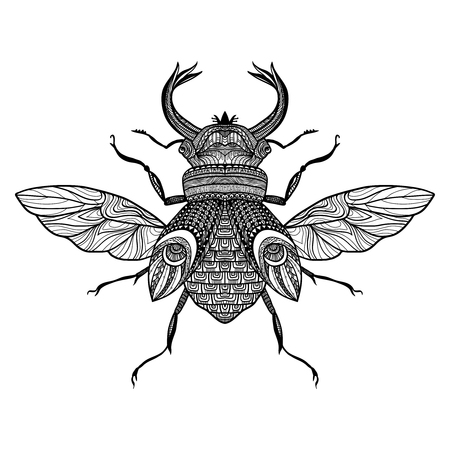 scarab: Sketch decorative bug with hand drawn ornament black vector illustration
