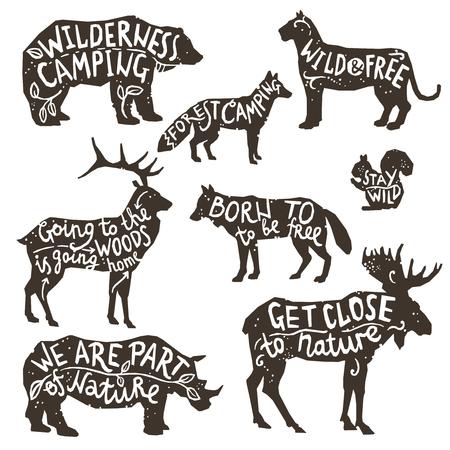 animals: A vadon élő állatok sziluettek betűkkel kréta tábla elszigetelt vektoros illusztráció