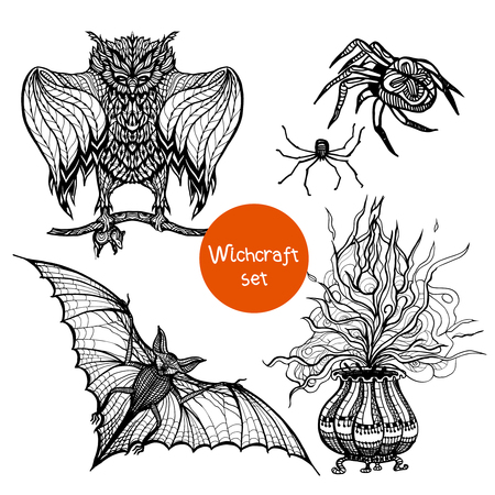 sketch: Witchcraft doodle set with hand drawn owl spider and pot isolated vector illustration