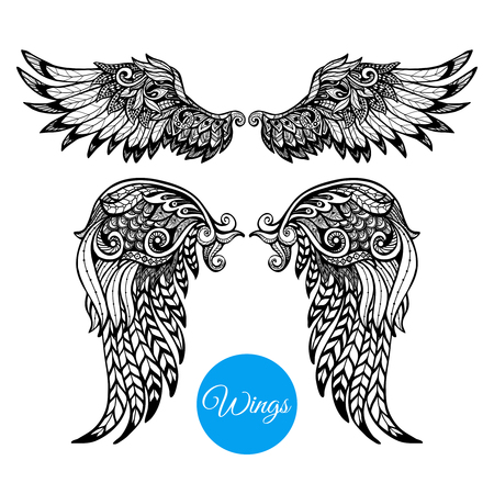 alas de angel: Alas decorativas establecidos con dibujados a mano plumas ornamentales aislados ilustración vectorial Vectores