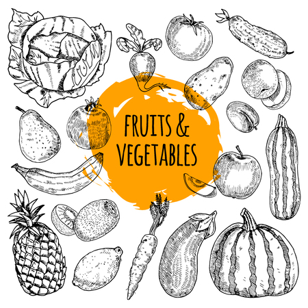 pumpkin tomato: Healthy food pictograms arrangement of fruits and vegetables collection hand drawn doodle style abstract vector illustration