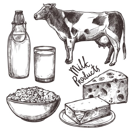 Sketch milk products set with cow and cheese isolated vector illustration