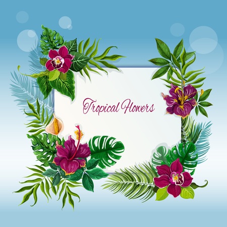 playas tropicales: Exotic tropical green leaves frame for message or note with hibiscus and orchid flowers  abstract vector illustration