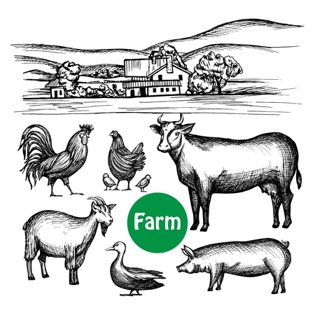 livestock: Hand drawn farm set with village house and livestock animals isolated vector illustration