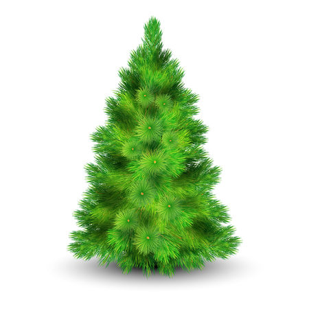 resin: Christmas tree with green branches for decorating the house realistic vector illustration Illustration