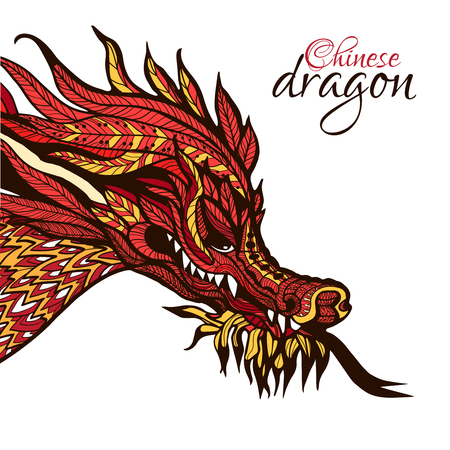 hand colored: Hand drawn chinese dragon head with colored ornament vector illustration