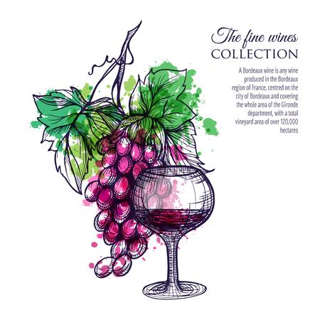 vinho: Copo de vinho tinto com ilustração vetorial mão filial da uva desenhada