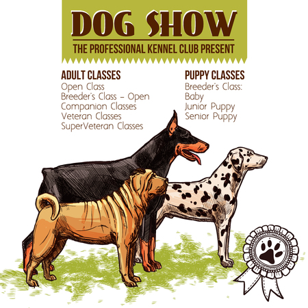 sharpei: Dogs show with sketch doberman dalmatian and shar-pei profiles vector illustration