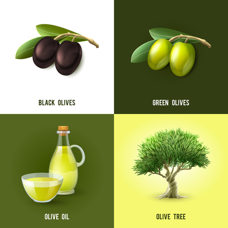 Olive design concept set with black and green olives oil and tree icons isolated vector illustration Ilustração