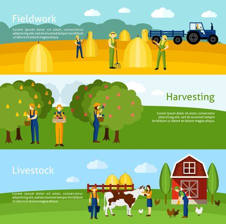 domestic cattle: Hay harvesting fieldwork and domestic animals breeding farming 3 flat horizontal banners set abstract isolated vector illustration