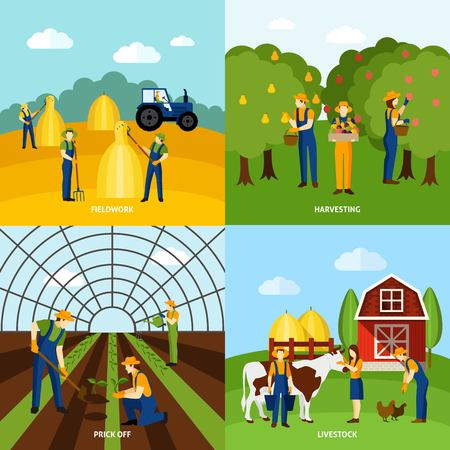 fieldwork: Farming crop agriculture and domestic animals raising 4 flat icons composition square poster abstract isolated vector illustration
