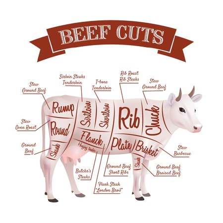 beef cuts: Beef cuts concept with realistic cow with parts scheme vector illustration
