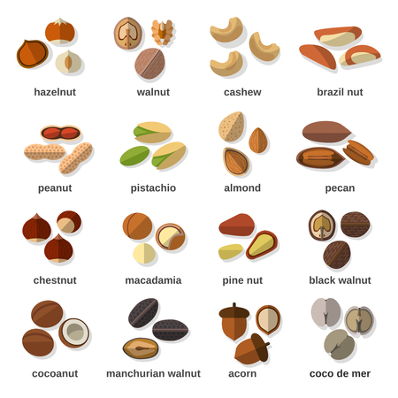 hazelnuts: Nuts flat icons set with hazelnut walnut cashew peanut isolated vector illustration