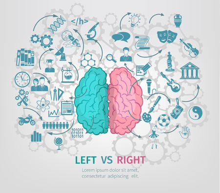 left right: Human brain concept with left and right hemispheres flat vector illustration
