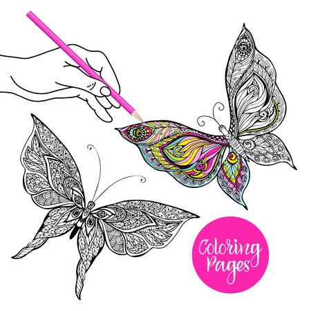 butterfly flower: Human hand coloring decorative butterfly with colored pencil vector illustration Illustration