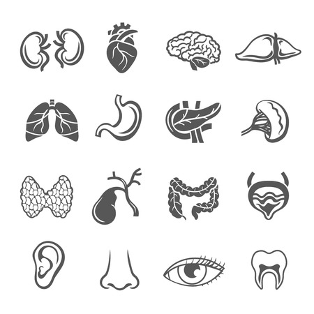 Human organs black icons set with eye ear and heart isolated vector illustration