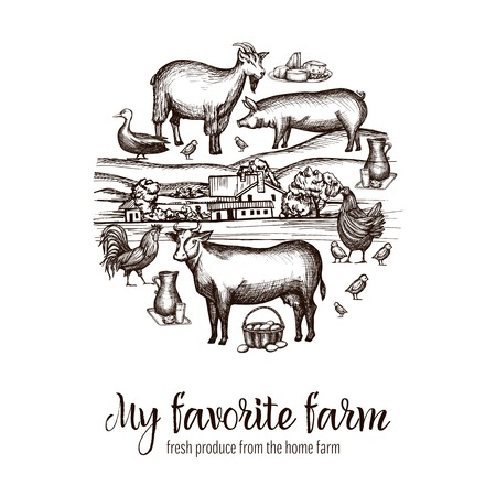 livestock: Farmers market poster with hand drawn livestock animals food and village on background vector illustration Illustration