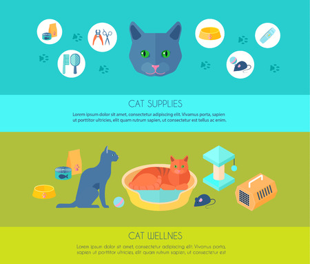 toy toilet bowl: Indoor cats care information and  supplies 2 horizontal flat banners composition poster abstract isolated vector illustration Illustration