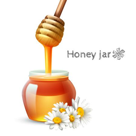 miel de abeja: flor de la margarita palillo de la miel y el tarro conjunto realista ilustración vectorial
