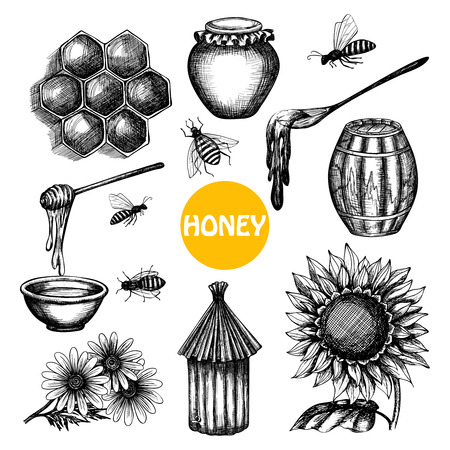a bee: Honey production black icons set with beehive honeycombs cells and flying bees doodle abstract isolated vector illustration