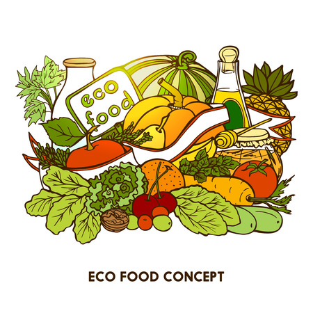 pepino caricatura: Hand drawn eco food concept with colorful vegetables fruits milk and vegetable oil  bottles vector illustration Vectores