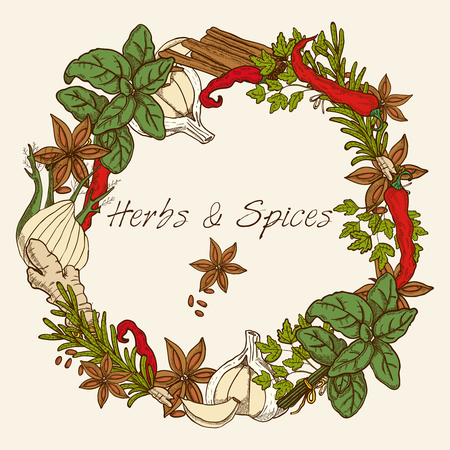 basil: Herbs decorative round frame with anise stars cloves of garlic cinnamon sticks ginger root and spices leaves vector illustration