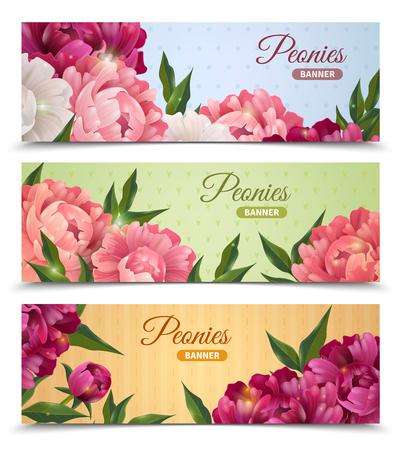 Flower horizontale realistische spandoeken met geïsoleerde pioenrozen vector illustratie Stock Illustratie