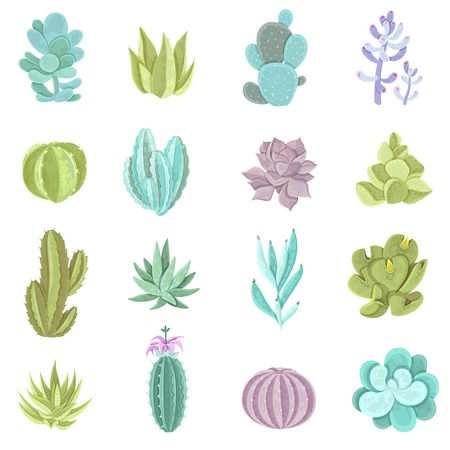 Decorative different types of cactus icons set with thorns flat isolated vector illustration Çizim