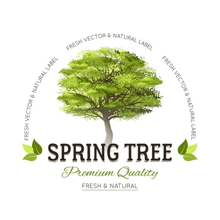 현실적인 그린 봄 나무와 프리미엄 품질의 텍스트 벡터 일러스트 레이션 타이 포 그래피 로고 엠블럼 일러스트