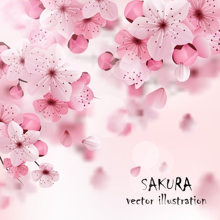 flowers: Beautiful print with blossoming dark and light pink sakura flowers and title vector illustration