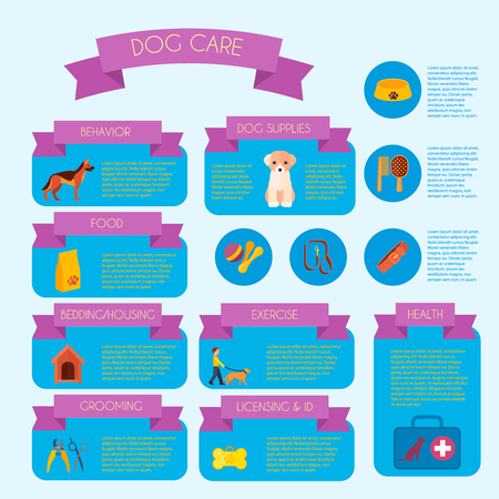 dog walking: Dog care infographic banner with health care and behavior trainings information informative blocks layout abstract vector illustration Illustration