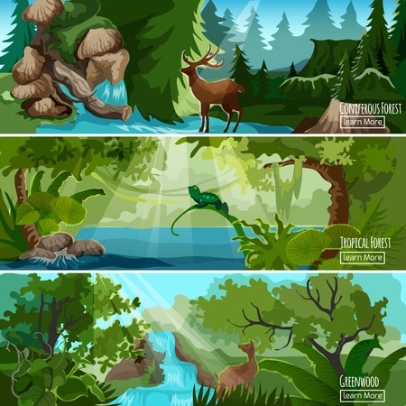 landscape nature: Greenwood tropical forest landscape 3 horizontal banners set with lizard deer and conifers abstract isolated vector illustration Illustration