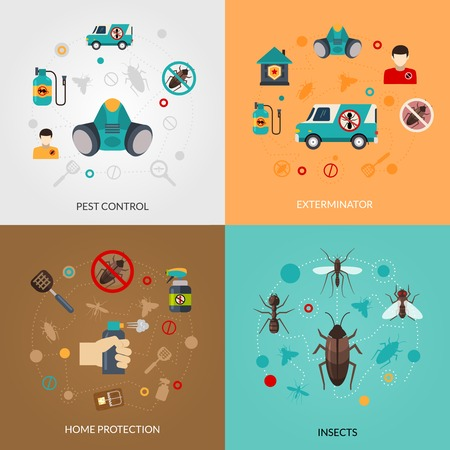 detecting: Home pest control services 4 flat icons square composition for detecting exterminating insects and rodents abstract isolated vector illustration