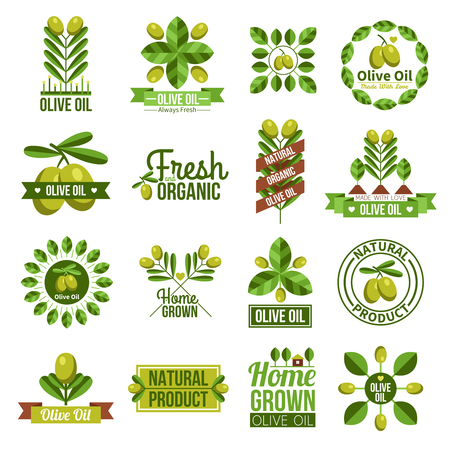 Flat label set of natural olive oil advertising with olive tree branches and olives  isolated vector illustration