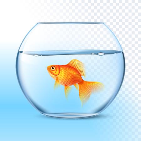 Simple poisson rouge nager dans transparent verre rond bol aquarium image réaliste print illustration vectorielle Vecteurs