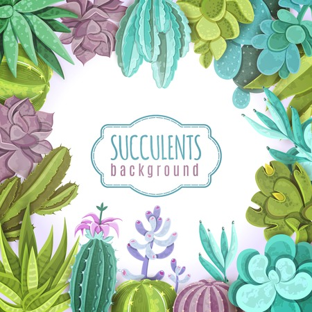 Succulents decorative background with different types of cactuses flat vector illustration