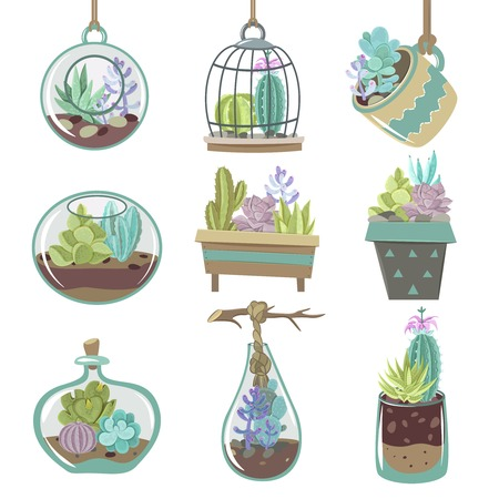 types of cactus: Growing succulents icons set with pots and soil flat isolated vector illustration