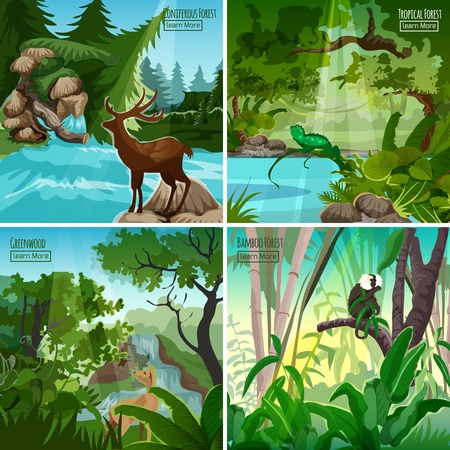 tropical forest: Tropical greenwood and bamboo forest 4 flat icons square composition with baboon monkey abstract isolated vector illustration