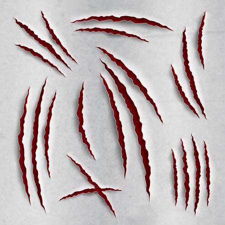 garra: uña de gato arañazos conjunto ilustración vectorial papel rasgado realista