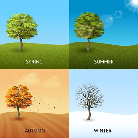 four season: Four season design concept set with trees on sky background isolated vector illustration