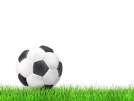 deportes colectivos: Bal�n de f�tbol hierba ilustraci�n vectorial de fondo blanco