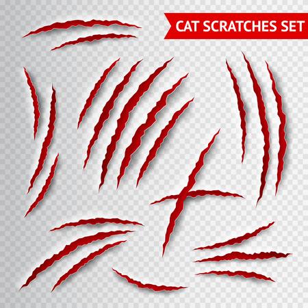 Garras del gato arañazos en fondo transparente ilustración vectorial realista