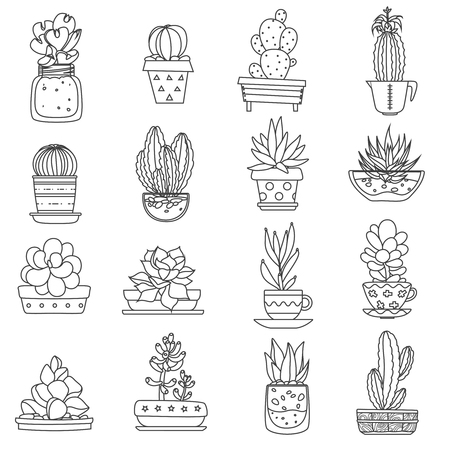 types of cactus: Cactus line black white icons set with different types of succulents flat isolated vector illustration Illustration