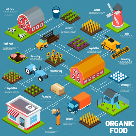 food production: Organic food production process flowchart with products growing and delivery isometric icons vector illustration Illustration