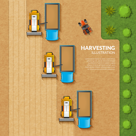 rice grain: Harvesting concept with top view grain field with argicultural machinery vector illustration