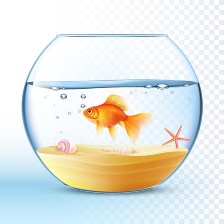 pez dorado: peces de colores nadando en la pecera redonda con la c�scara y estrellas de mar en el cartel de fondo ilustraci�n abstracta de la arena Vectores